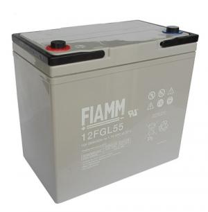 Аккумуляторная батарея 12В 55 Ач FIAMM FGL series