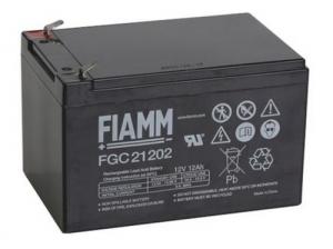 Аккумуляторная батарея 12В 12 Ач FIAMM FGC series