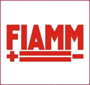 Аккумуляторная батарея 2В 880 Ач FIAMM SDH