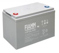 Аккумуляторная батарея 12В 100 Ач FIAMM FGL series
