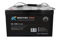 Аккумуляторная батарея ВОСТОК Pro CK-1290